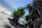 Kallala Beach